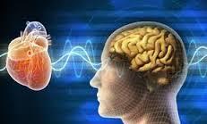 """""""El corazón tiene razones que la mente no puede entender"""""""